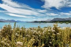 Neuseeland - 105
