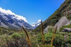 Neuseeland - 117