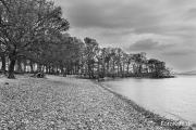 Am Ostufer des Loch Lomond