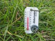 ... bei 26°C ...
