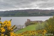 Urquhart Castle am Loch Ness.