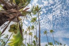 Hawaii-Big Island 2018