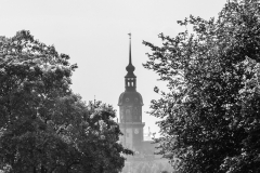 Dresden - Katholische Hofkirche