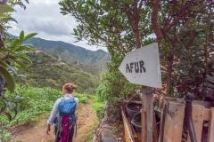 Teneriffa - Wandern im Anagagebirge -zurück nach Afur