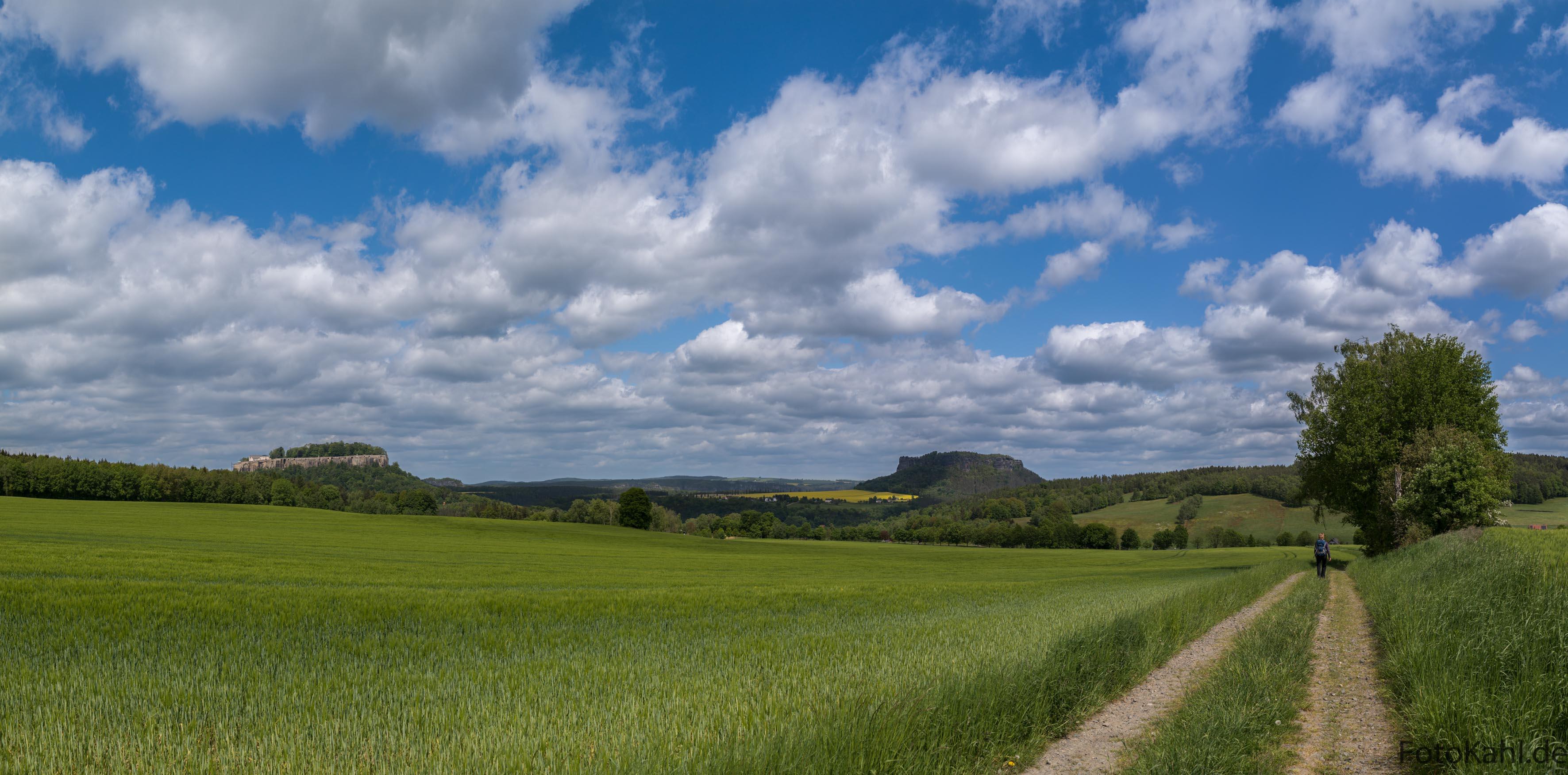 Blick auf die Festung Königstein und dem Lilienstein - Sächsische Schweiz